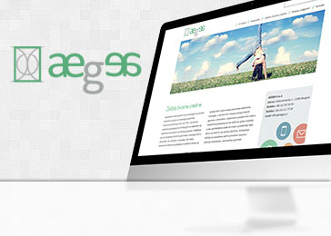 Website client Aegea
